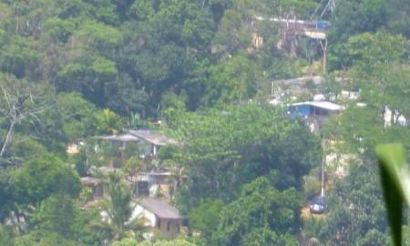 jardim-botanico-favela-horto