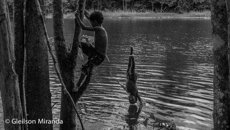 Amazônia 12