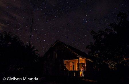 Amazonia 22