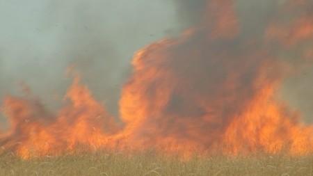Bocaina - incendios